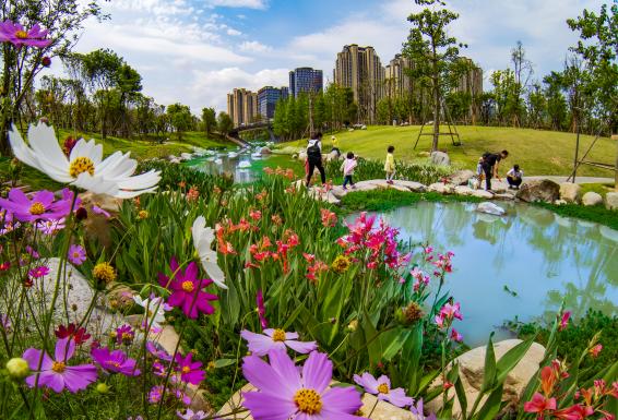 寻找春天  共赏春景—福州市自然资源和规划局开展晋安生态公园踏青暨自然科普亲子教育实践活动